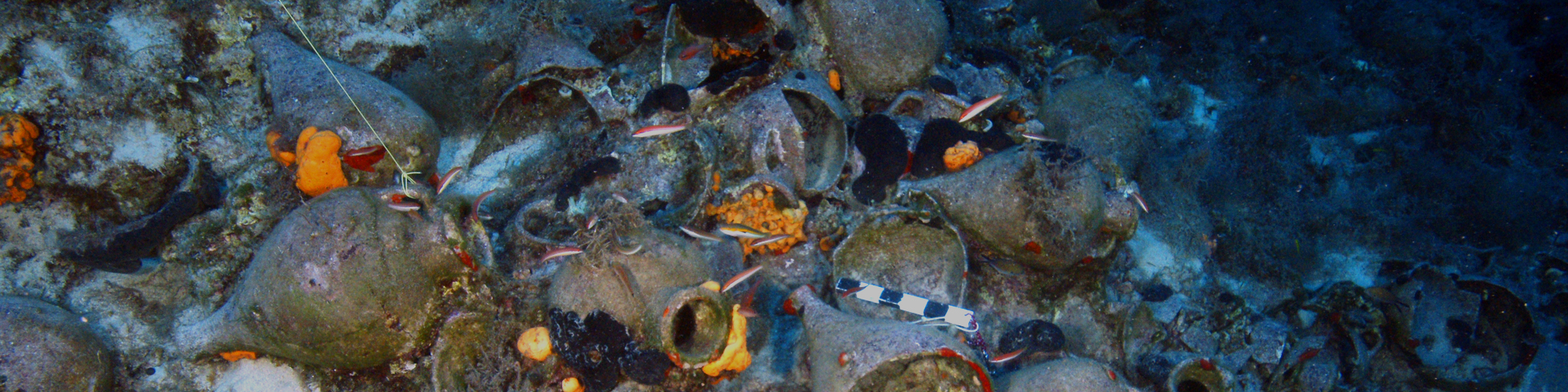 CAIRN Archaeologist Assists in the Discovery of Ancient Shipwrecks in Small Greek Archipelago